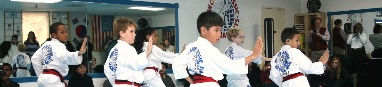 World Classic Martial Arts